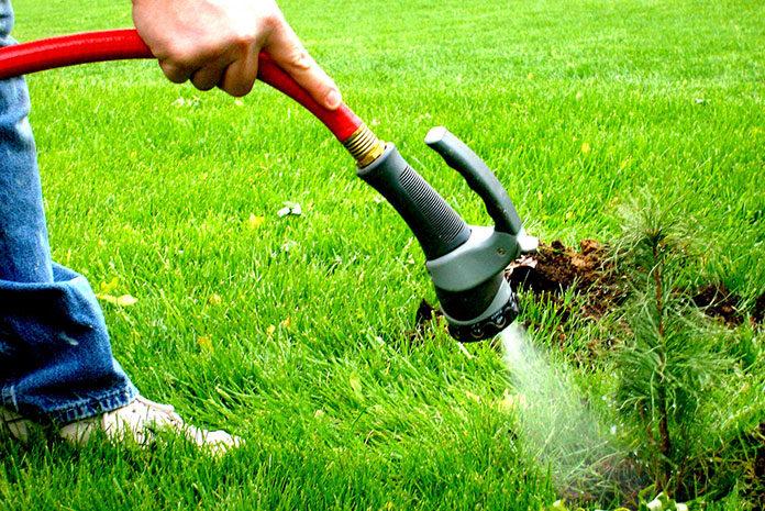 podlewanie trawnika