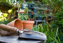11 najbardziej przydatnych narzędzi do ogrodu